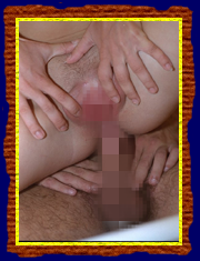 Free Anal Porn Pics Usa